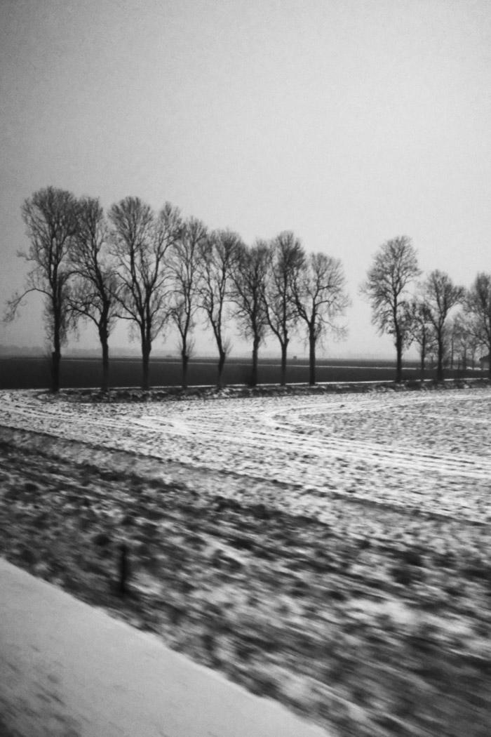 friesland-1-2